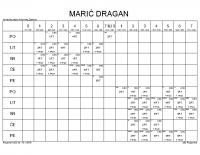 MARIĆ DRAGAN