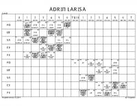 ADRIĆ LARISA