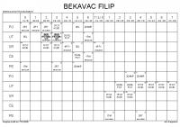 BEKAVAC FILIP